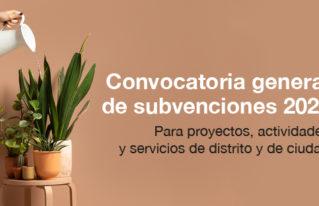 ajuntament subvencions cast